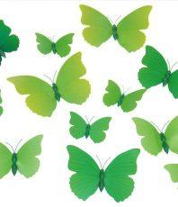 Vlinders 3D Groen